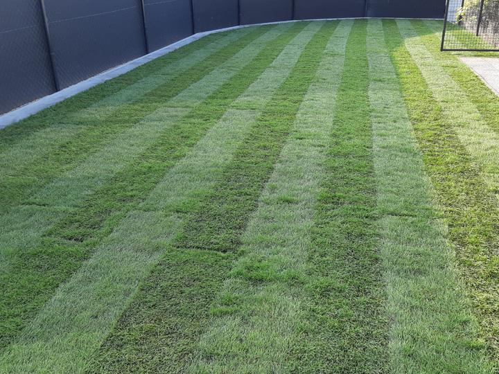aanleg grasmatten